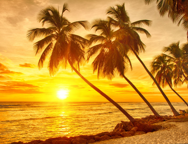 Sunset over the sea and beach in Barbados
